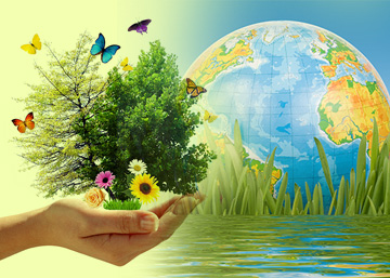 Sustainable Technologies – IV Green Technologies